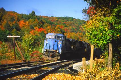 Train in Foliage Season