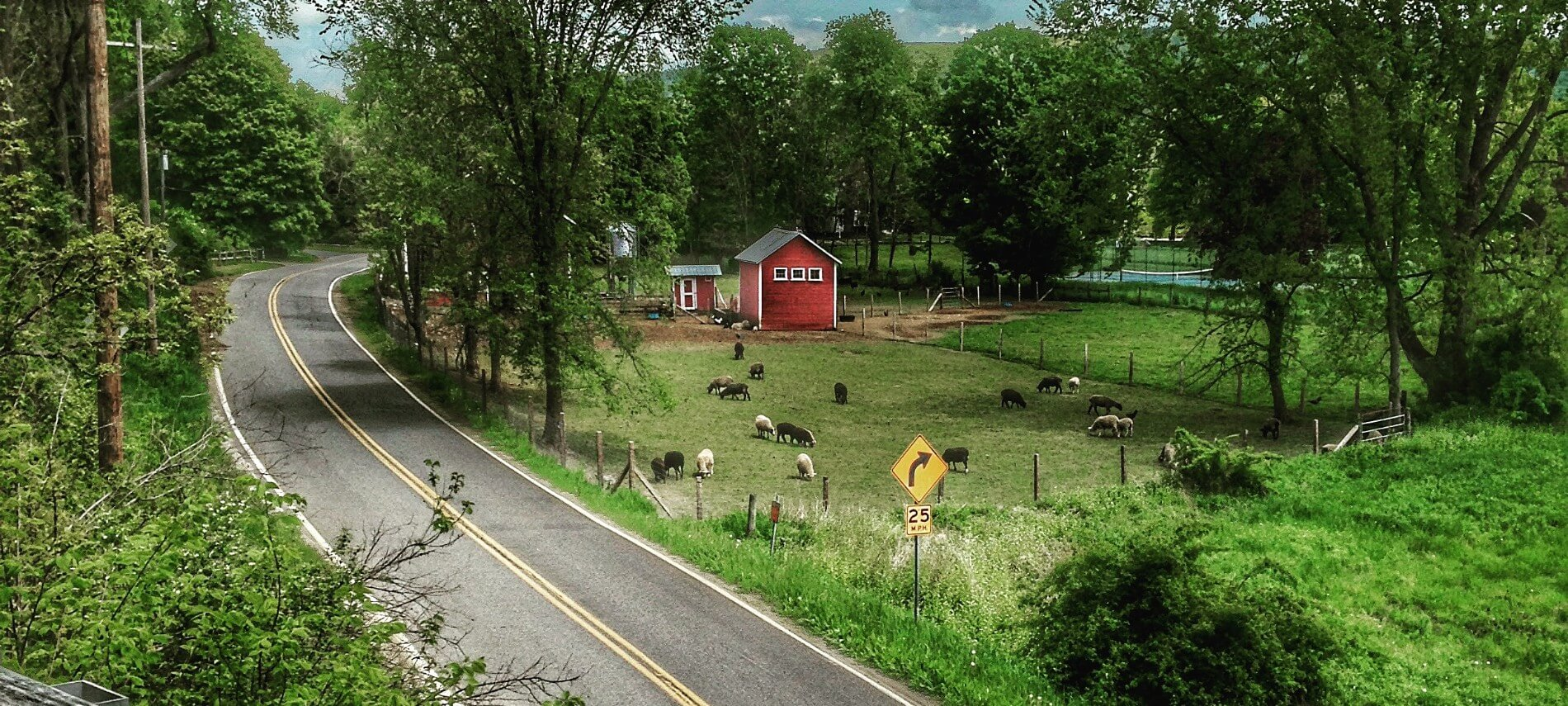 Empty country road next to a farm with a red barn and animals grazing in a pasture